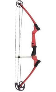 The Genesis Original Bow is our pick for youth archers