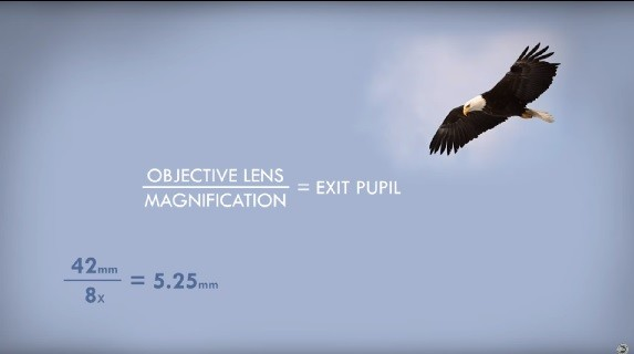 binoculars exit pupil