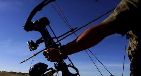 Do you wonder what is the best bowfishing bow?