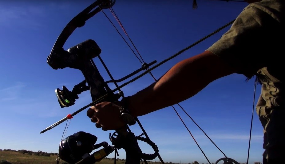 Pick a bow bow hunting archery tips news and gear reviews for Bow fishing bows