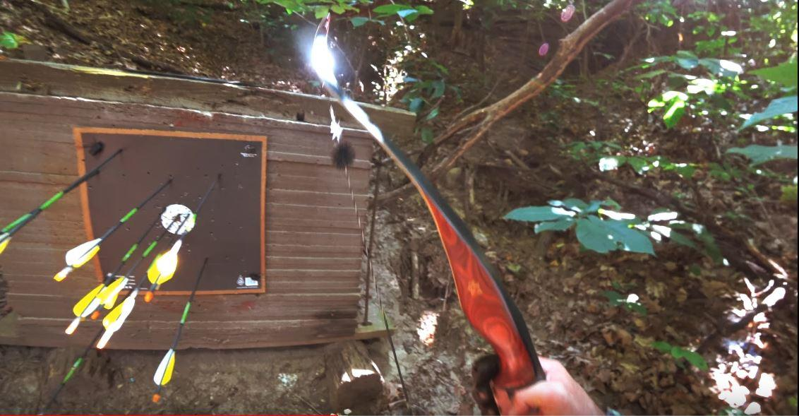Best Recurve Bow Reviews 2019 - Hunting and Target shooting