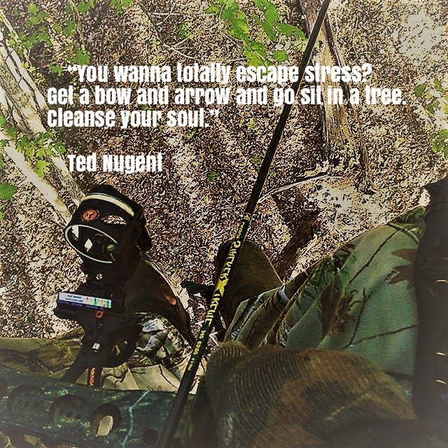Tree stand photo with bow hunting quote